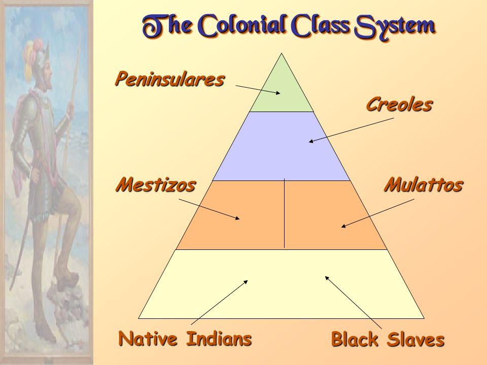 The Colonial Class System Peninsulares Creoles MestizosMulattos Native Indians Black Slaves