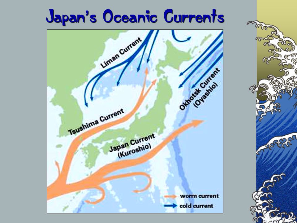 Japan s Oceanic Currents