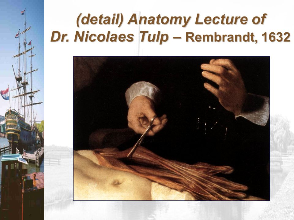 (detail) Anatomy Lecture of Dr. Nicolaes Tulp – Rembrandt, 1632