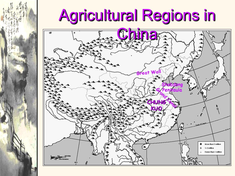 Agricultural Regions in China Shabdong Peninsula G r a n d C a n a l G r e a t W a l l CHUNG KUO