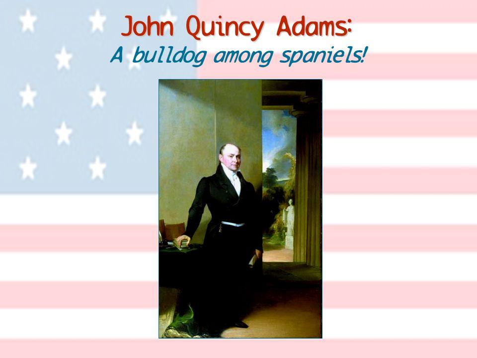 John Quincy Adams: John Quincy Adams: A bulldog among spaniels!