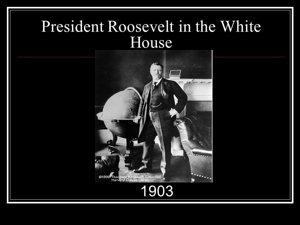 President Roosevelt in the White House 1903