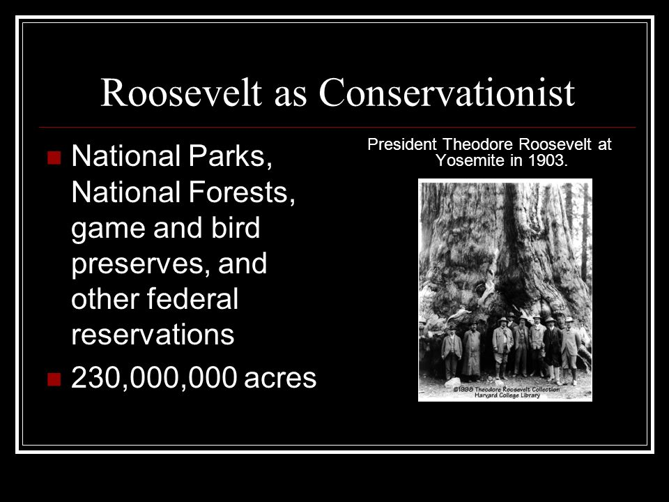 Roosevelt as Conservationist National Parks, National Forests, game and bird preserves, and other federal reservations 230,000,000 acres President The