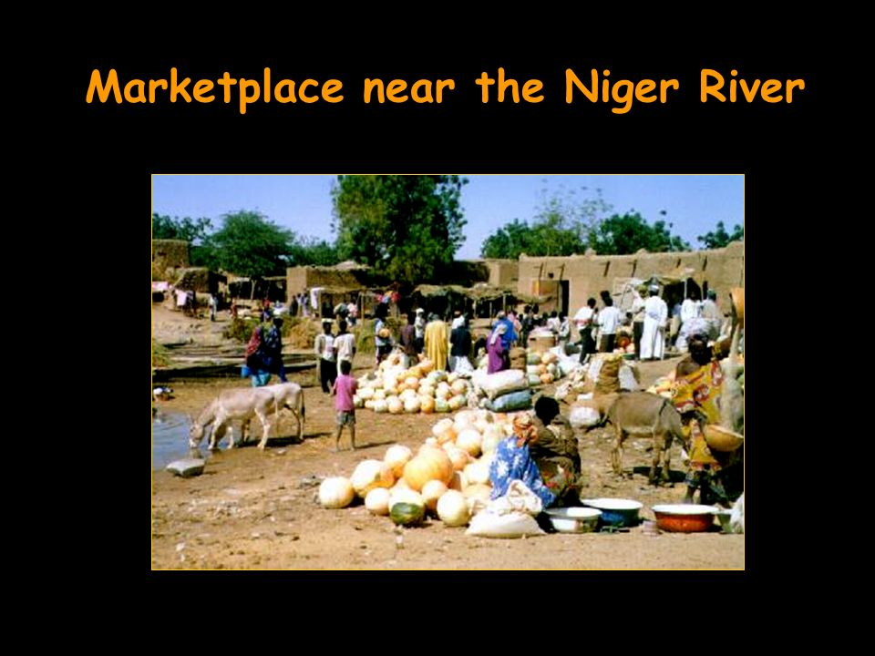 Marketplace near the Niger River