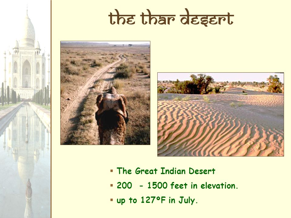 The Thar Desert The Great Indian Desert 200 - 1500 feet in elevation. up to 127ºF in July.