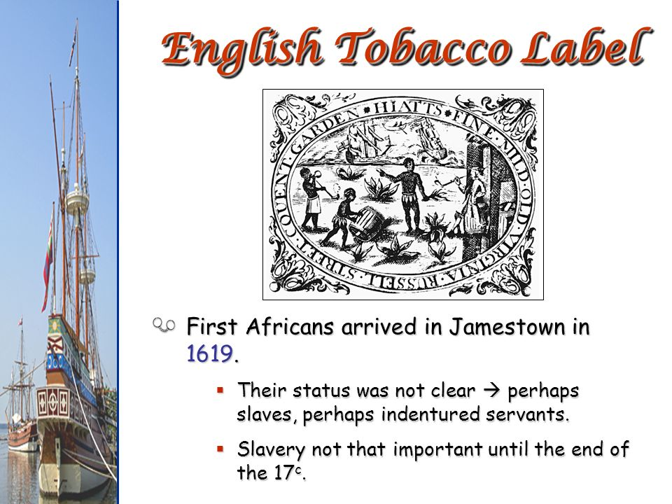 English Tobacco Label First Africans arrived in Jamestown in 1619. Their status was not clear perhaps slaves, perhaps indentured servants. Their statu