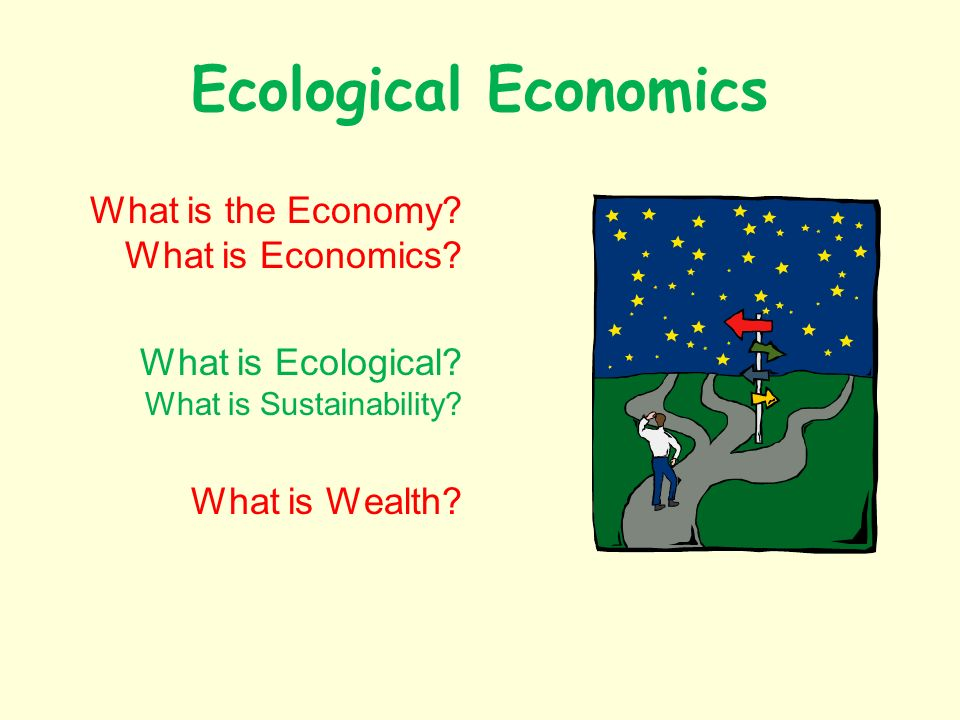 Ecological Economics What is the Economy. What is Economics.