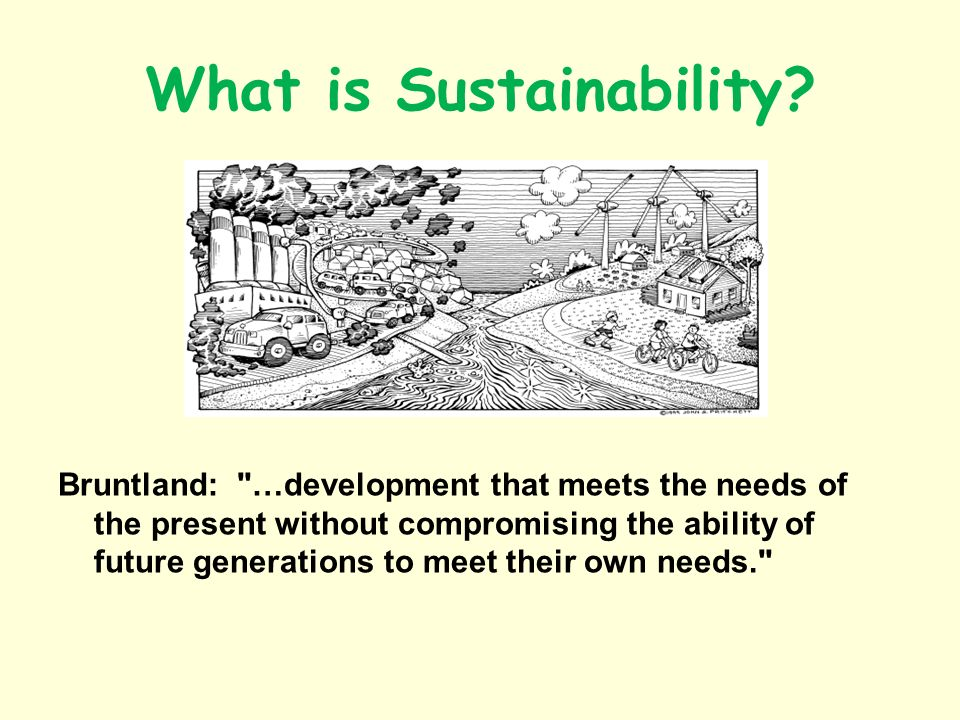 What is Sustainability? Bruntland: