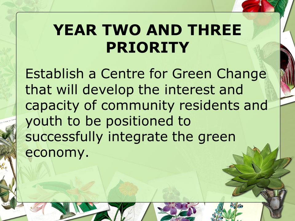 YEAR TWO AND THREE PRIORITY Establish a Centre for Green Change that will develop the interest and capacity of community residents and youth to be positioned to successfully integrate the green economy.