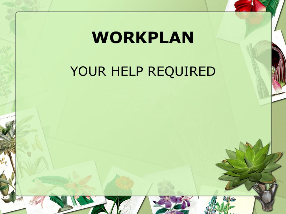 WORKPLAN YOUR HELP REQUIRED