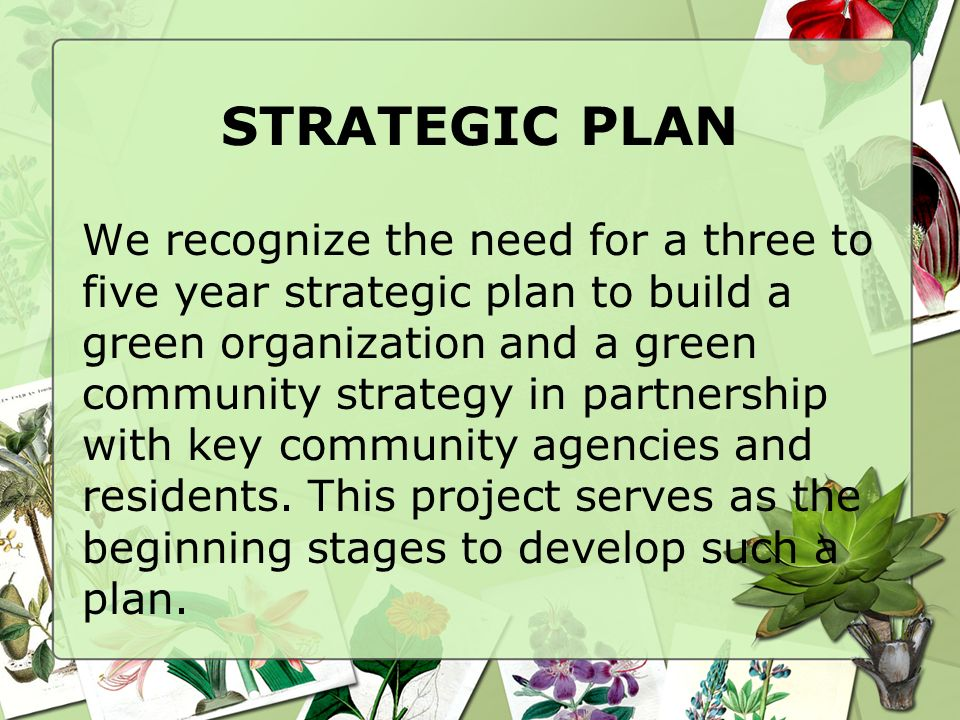 STRATEGIC PLAN We recognize the need for a three to five year strategic plan to build a green organization and a green community strategy in partnership with key community agencies and residents.