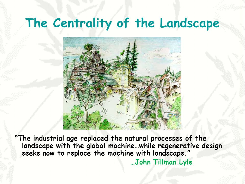 The Centrality of the Landscape The industrial age replaced the natural processes of the landscape with the global machine…while regenerative design seeks now to replace the machine with landscape.