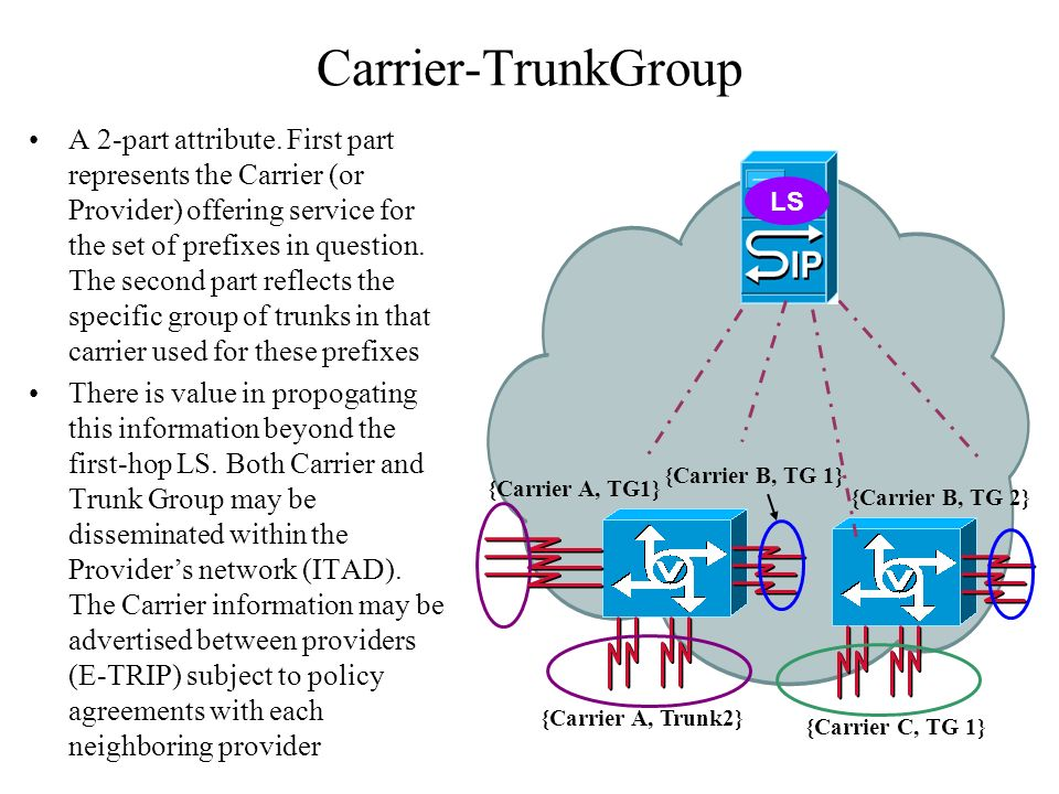 What have we accomplished with Carrier-TrunkGroup .