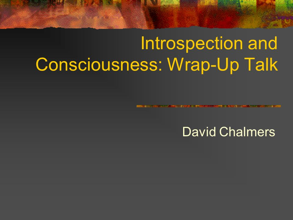 Introspection for Great Apes David Chalmers