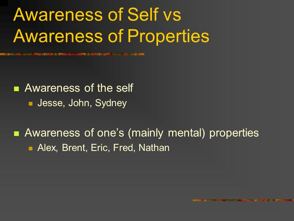 Awareness of Self vs Awareness of Properties Awareness of the self Jesse, John, Sydney Awareness of ones (mainly mental) properties Alex, Brent, Eric, Fred, Nathan