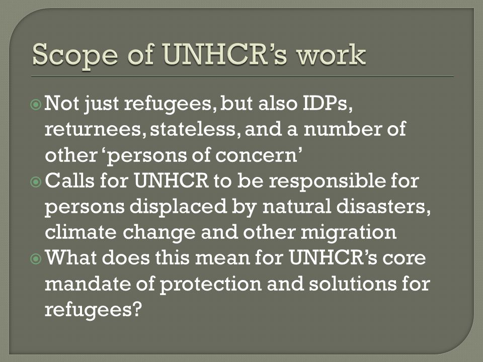 Not just refugees, but also IDPs, returnees, stateless, and a number of other persons of concern Calls for UNHCR to be responsible for persons displaced by natural disasters, climate change and other migration What does this mean for UNHCRs core mandate of protection and solutions for refugees