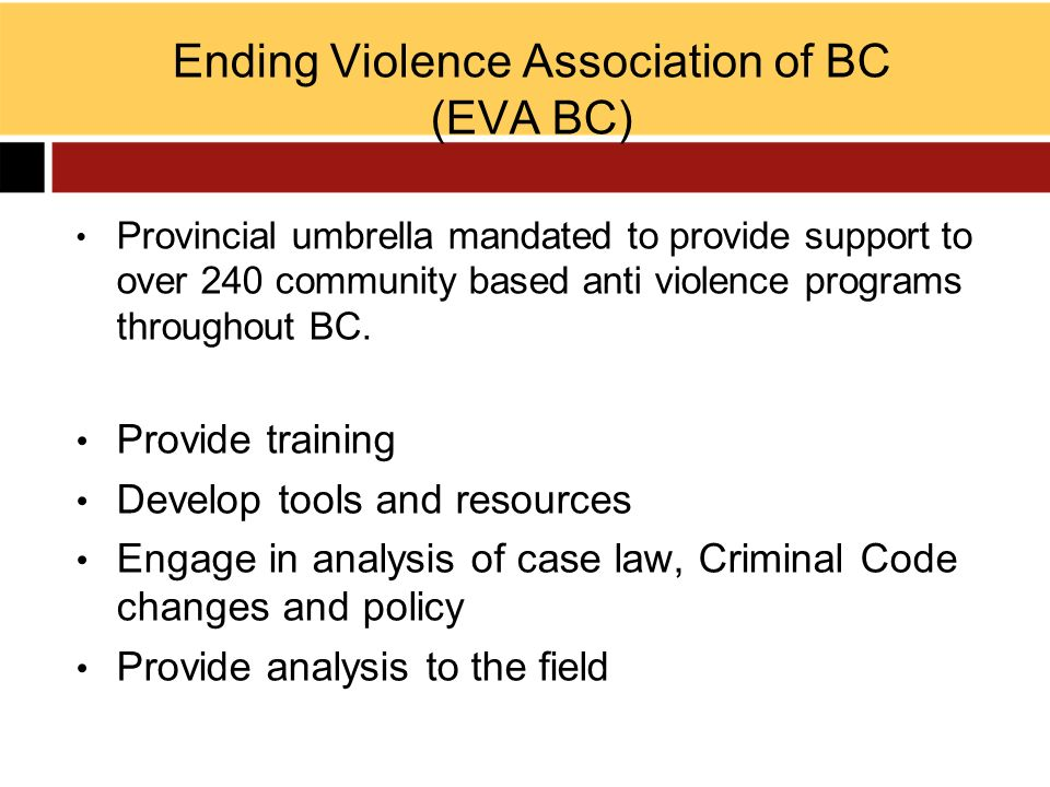 Building better and more coordinated cross sectoral networks in communities across BC Act as bridge to policy makers and legislators, providing information: –What is undermine the safety of women and children –creating solutions to the problems, with all the sectors