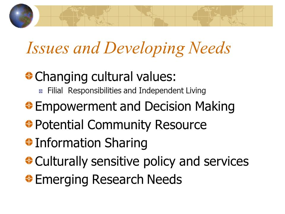 Issues and Developing Needs Changing cultural values: Filial Responsibilities and Independent Living Empowerment and Decision Making Potential Community Resource Information Sharing Culturally sensitive policy and services Emerging Research Needs