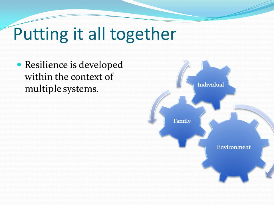 Putting it all together Resilience is developed within the context of multiple systems.