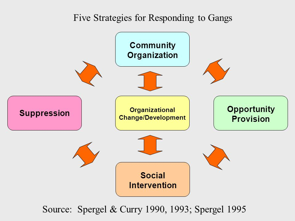 Five Strategies for Responding to Gangs Source: Spergel & Curry 1990, 1993; Spergel 1995 Suppression Community Organization Organizational Change/Deve