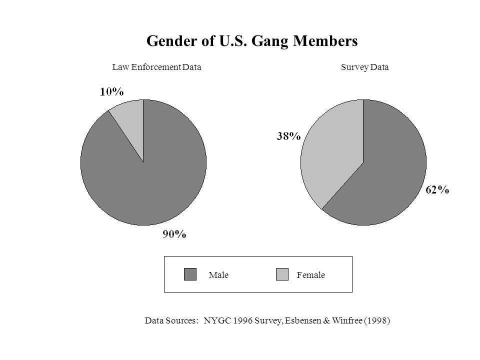 Gender of U.S. Gang Members Data Sources: NYGC 1996 Survey, Esbensen & Winfree (1998) Survey DataLaw Enforcement Data FemaleMale