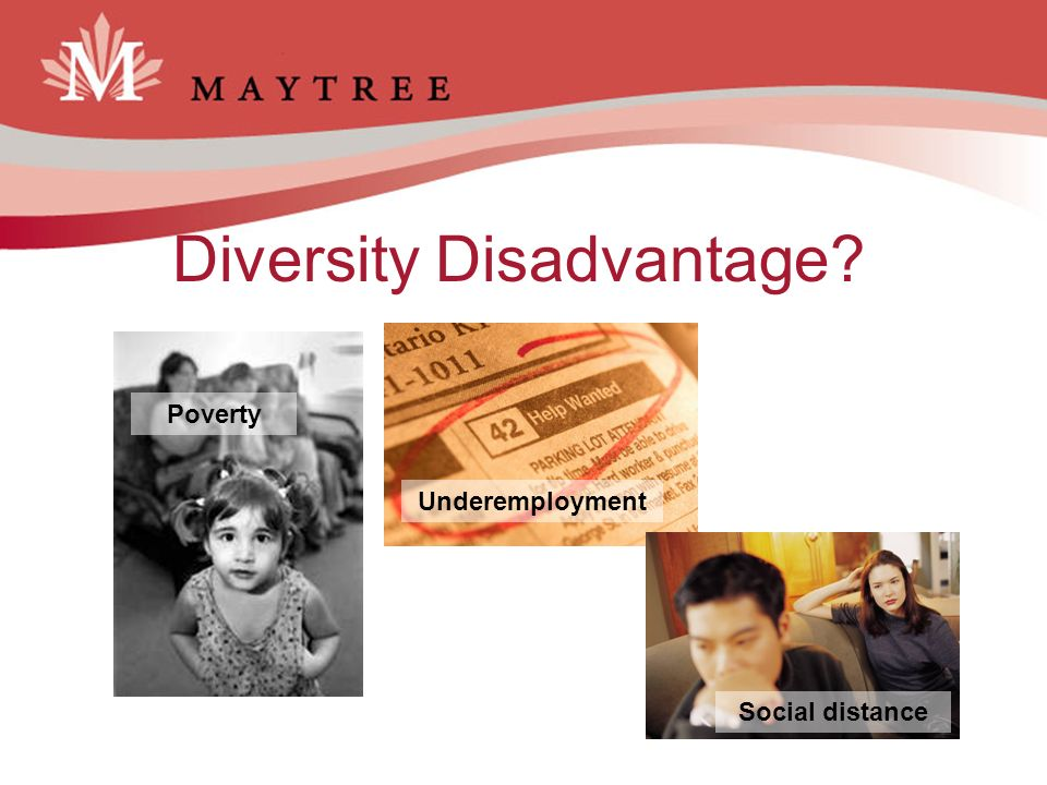 Why diversity in leadership matters The Conference Board of Canada.
