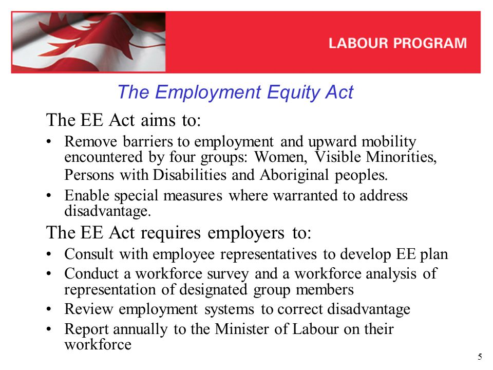 6 All Employers covered by the Employment Equity Act in 2003