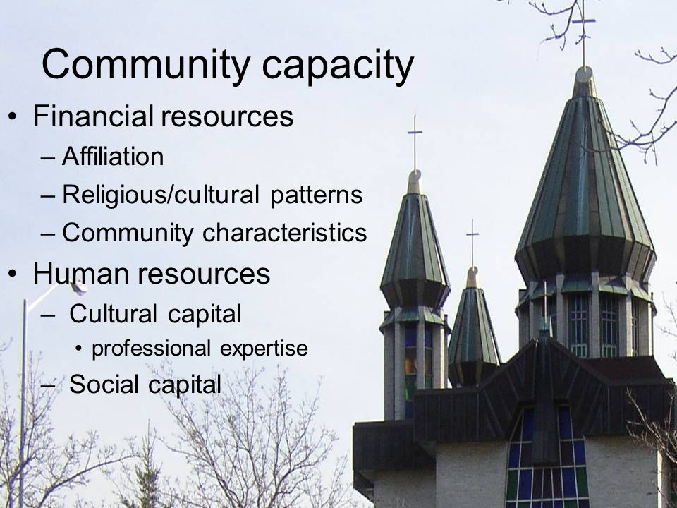 Community capacity Financial resources –Affiliation –Religious/cultural patterns –Community characteristics Human resources – Cultural capital professional expertise – Social capital