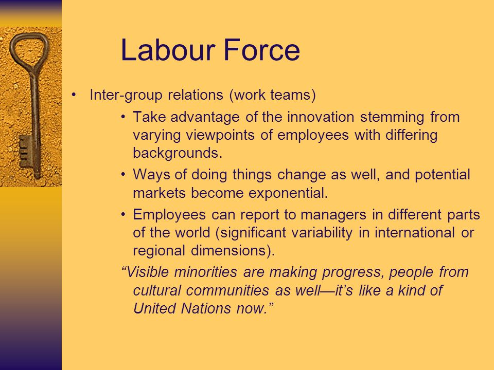 Labour Force Inter-group relations (work teams) Take advantage of the innovation stemming from varying viewpoints of employees with differing backgrounds.