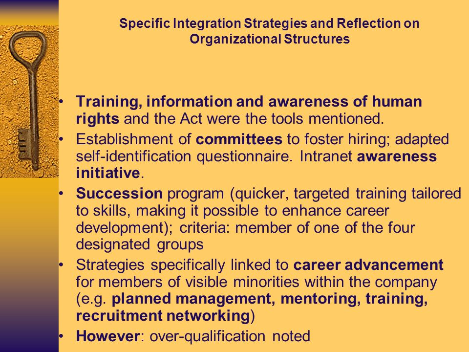 Specific Integration Strategies and Reflection on Organizational Structures Training, information and awareness of human rights and the Act were the t