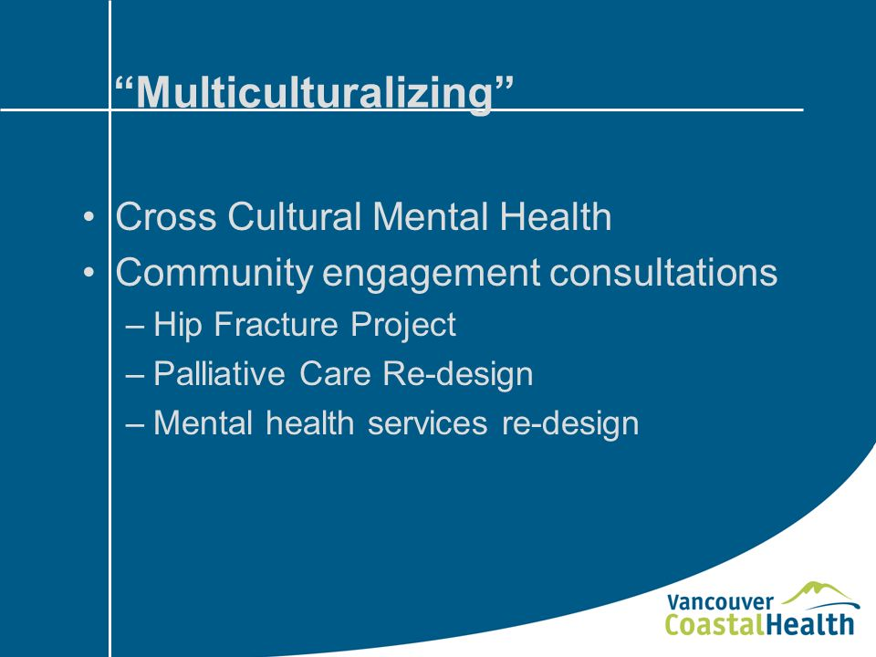 Multiculturalizing Cross Cultural Mental Health Community engagement consultations –Hip Fracture Project –Palliative Care Re-design –Mental health services re-design