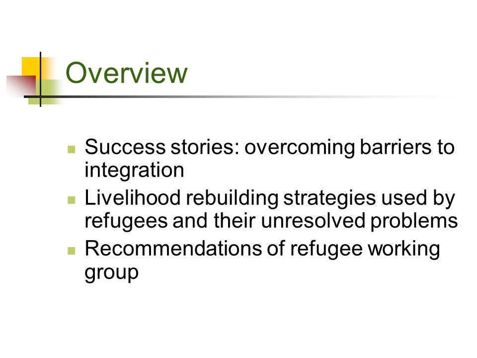 Overview Success stories: overcoming barriers to integration Livelihood rebuilding strategies used by refugees and their unresolved problems Recommendations of refugee working group