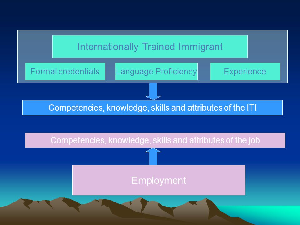 Internationally Trained Immigrant Formal credentialsLanguage ProficiencyExperience Employment Competencies, knowledge, skills and attributes of the IT