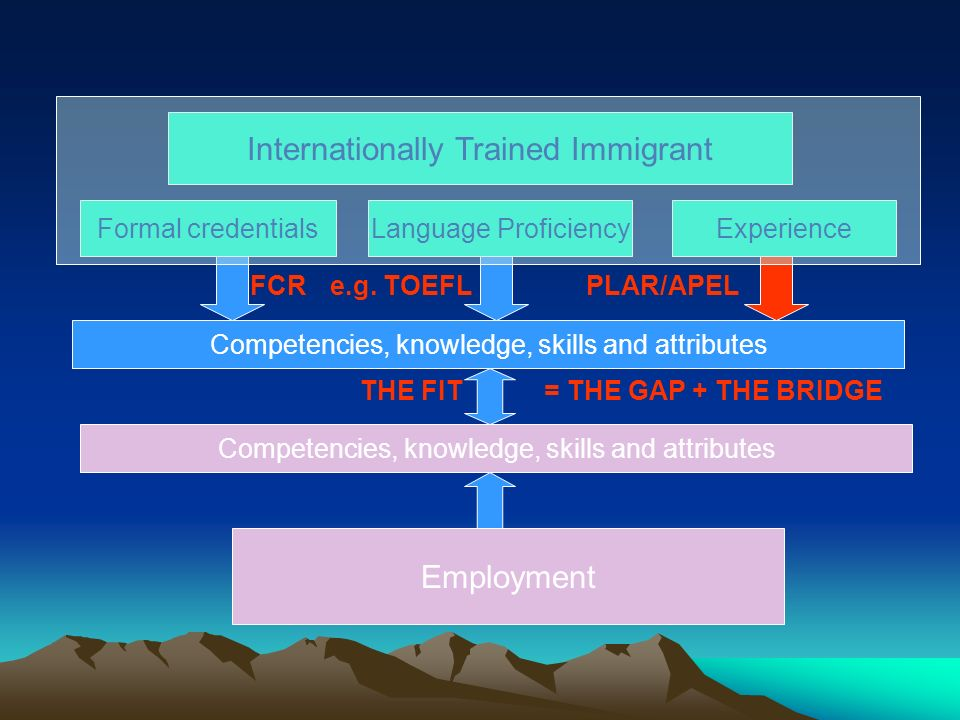 Internationally Trained Immigrant Formal credentialsLanguage ProficiencyExperience Employment Competencies, knowledge, skills and attributes = THE GAP