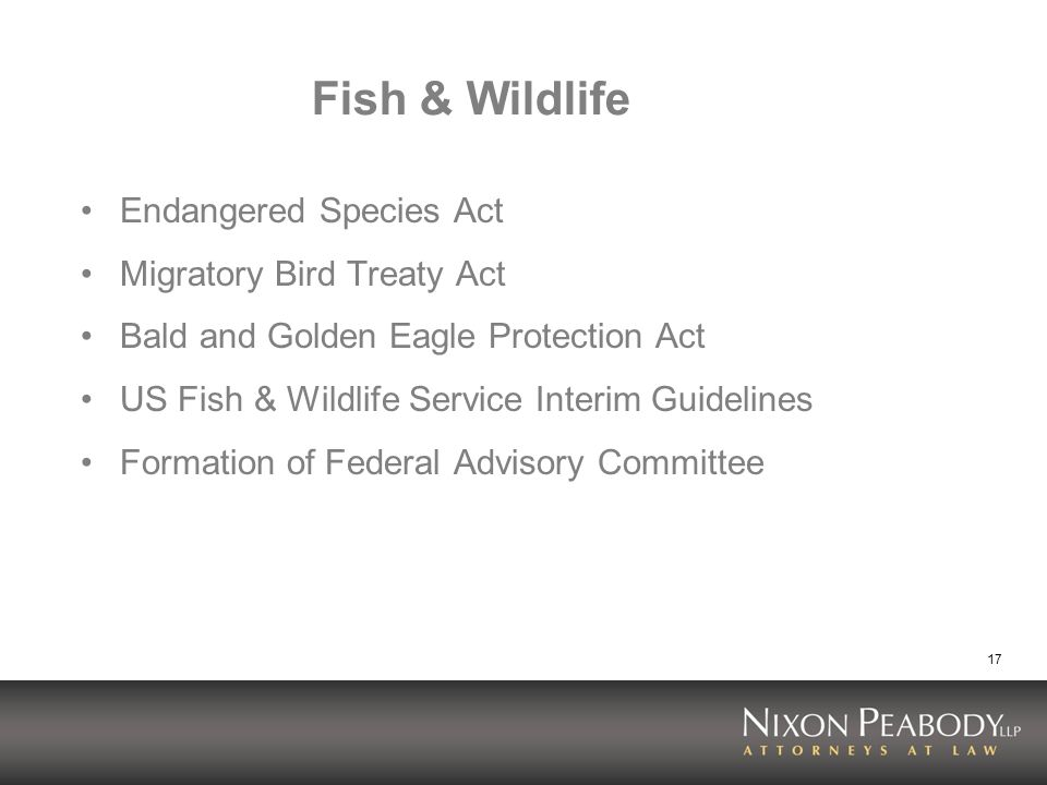 17 Fish & Wildlife Endangered Species Act Migratory Bird Treaty Act Bald and Golden Eagle Protection Act US Fish & Wildlife Service Interim Guidelines Formation of Federal Advisory Committee