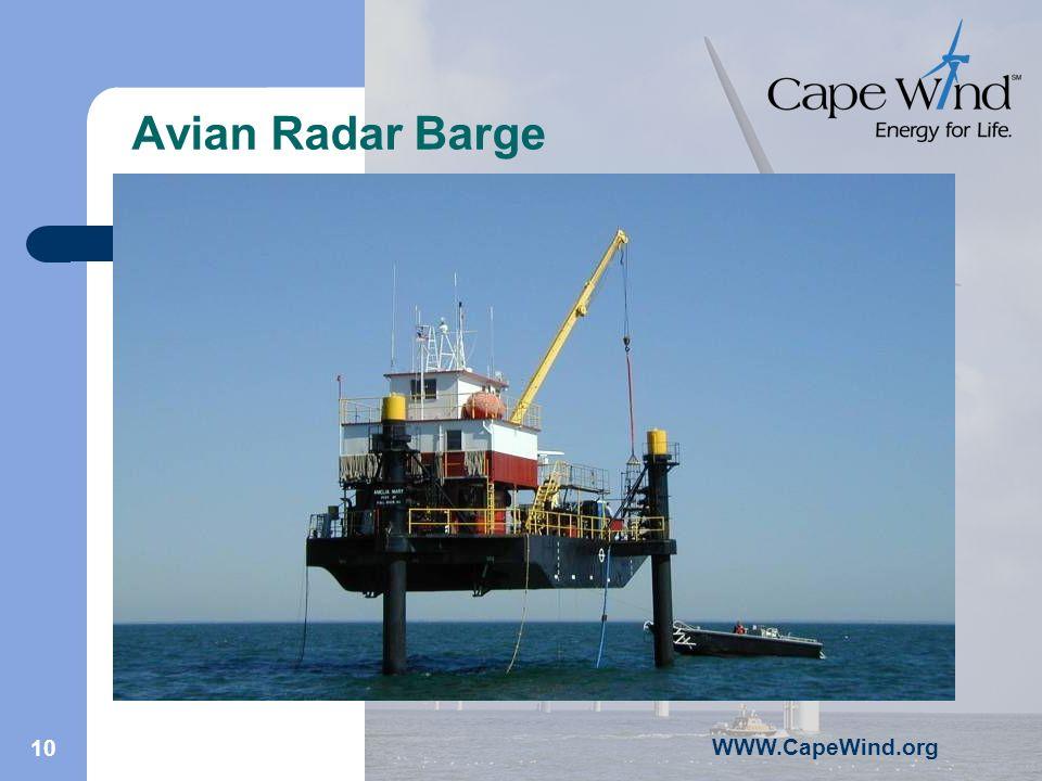 WWW.CapeWind.org 10 Avian Radar Barge
