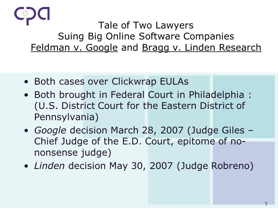 5 Tale of Two Lawyers Suing Big Online Software Companies Feldman v.