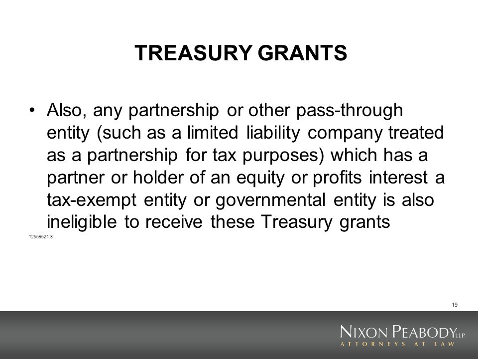 19 TREASURY GRANTS Also, any partnership or other pass-through entity (such as a limited liability company treated as a partnership for tax purposes)