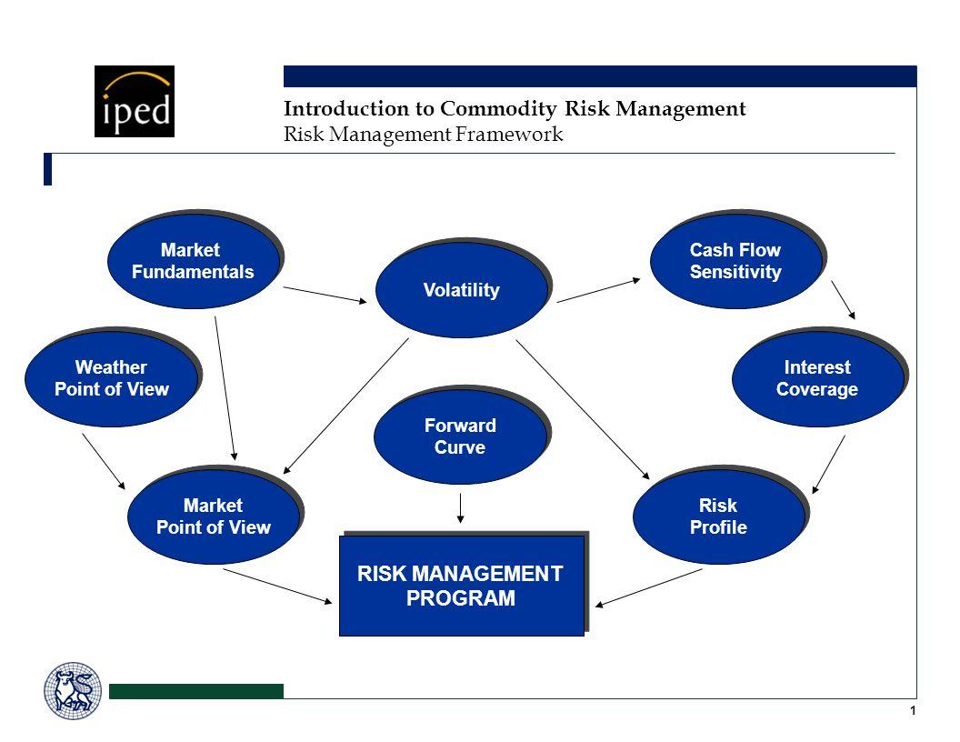 Market Fundamentals Market Fundamentals RISK MANAGEMENT PROGRAM RISK MANAGEMENT PROGRAM Market Point of View Market Point of View Volatility Forward C