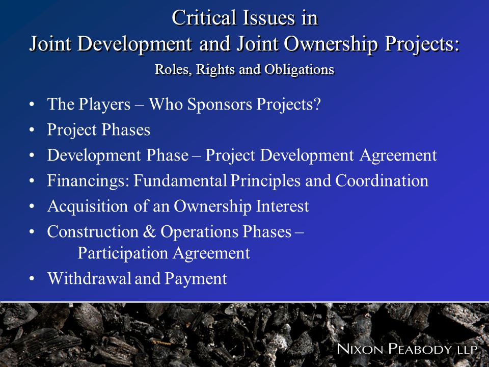Critical Issues In Joint Development And Joint Ownership Projects