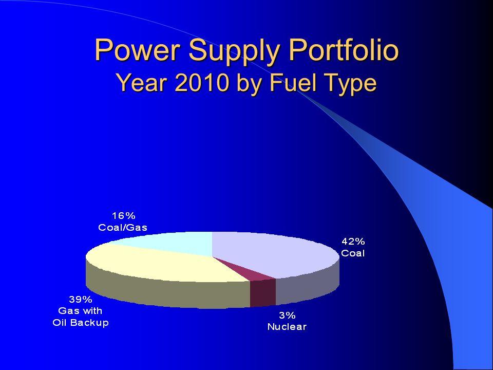 Power Supply Portfolio Year 2010 by Fuel Type