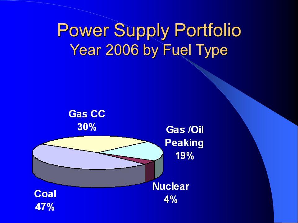 Power Supply Portfolio Year 2006 by Fuel Type