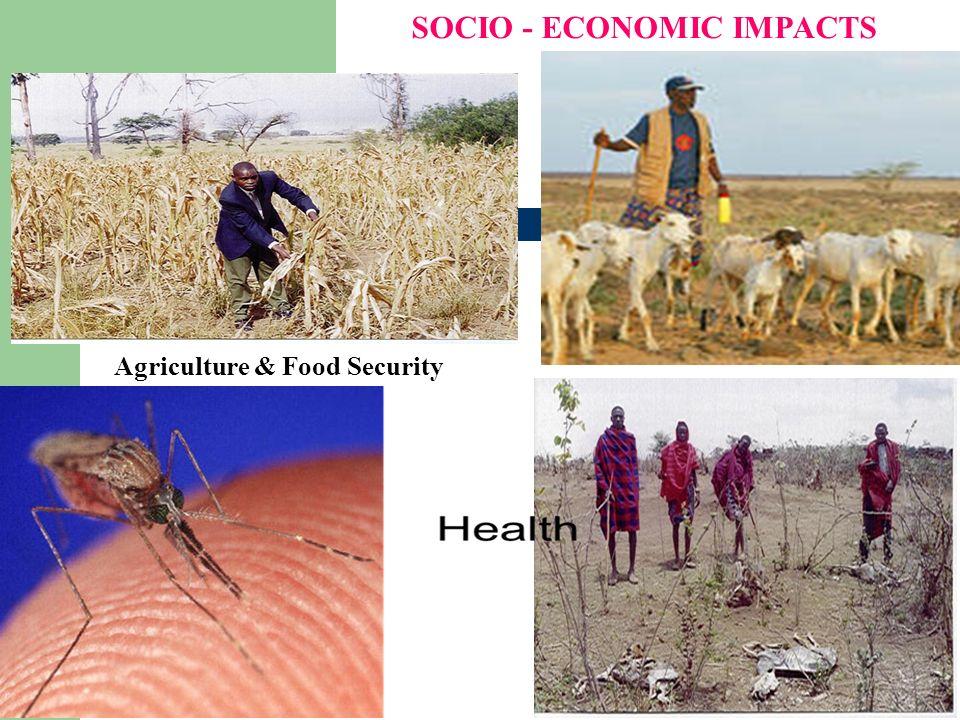 5 Agriculture & Food Security SOCIO - ECONOMIC IMPACTS