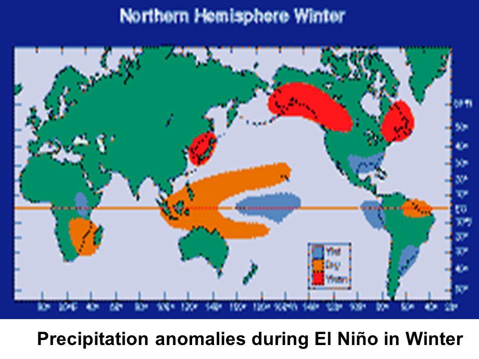 Precipitation anomalies during El Niño in Winter