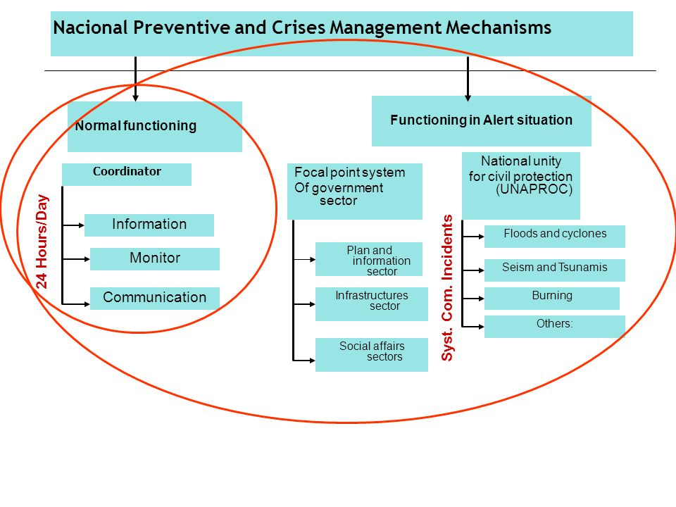 Coordinator Focal point system Of government sector National unity for civil protection (UNAPROC) Information Monitor Communication Plan and information sector Infrastructures sector Social affairs sectors Seism and Tsunamis Floods and cyclones Burning Others: Syst.