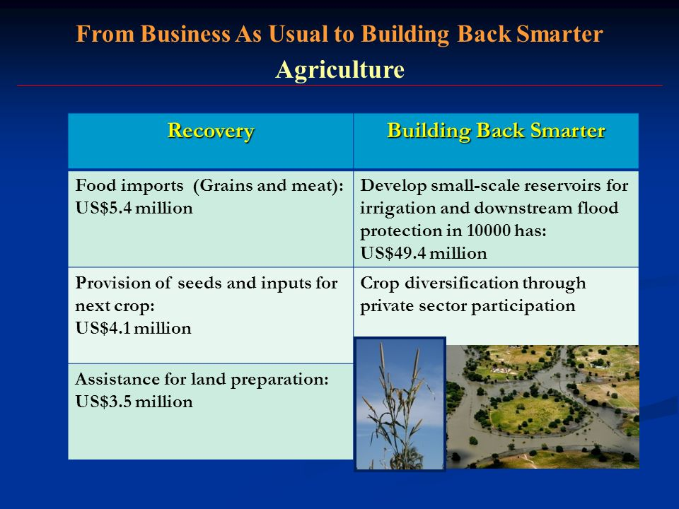 From Business As Usual to Building Back Smarter Agriculture Recovery Building Back Smarter Food imports (Grains and meat): US$5.4 million Develop smal