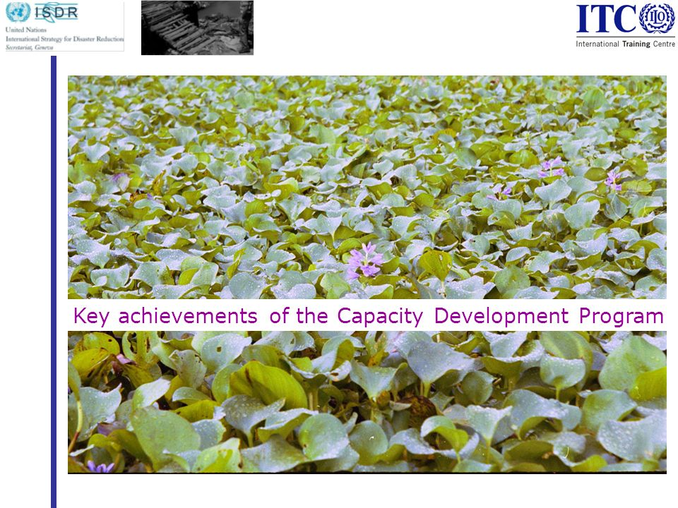 Key achievements of the Capacity Development Program