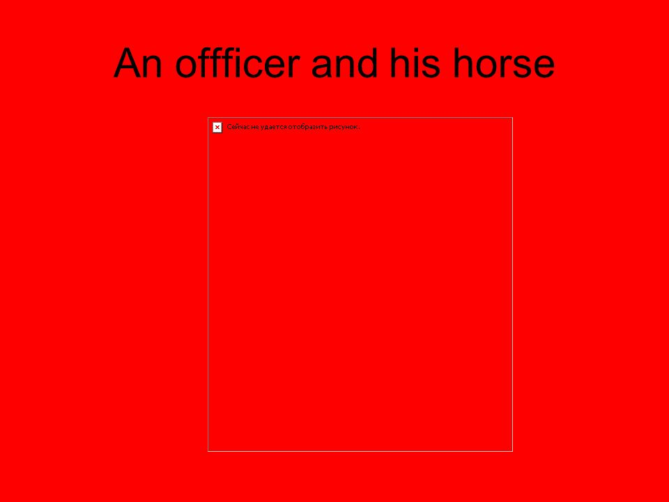 An offficer and his horse
