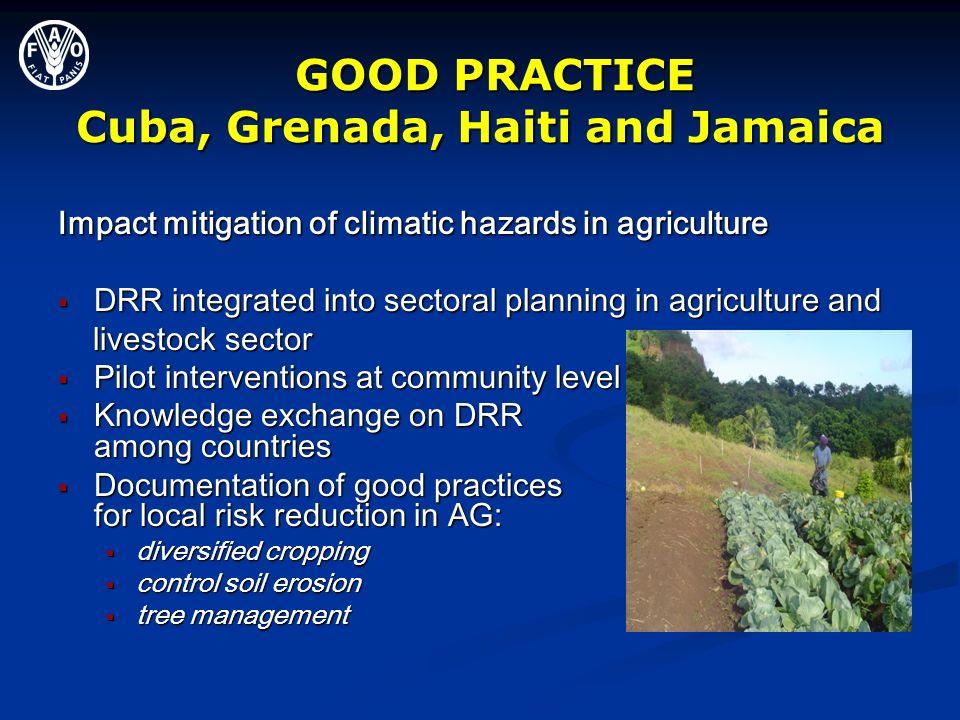 GOOD PRACTICE Cuba, Grenada, Haiti and Jamaica GOOD PRACTICE Cuba, Grenada, Haiti and Jamaica Impact mitigation of climatic hazards in agriculture DRR