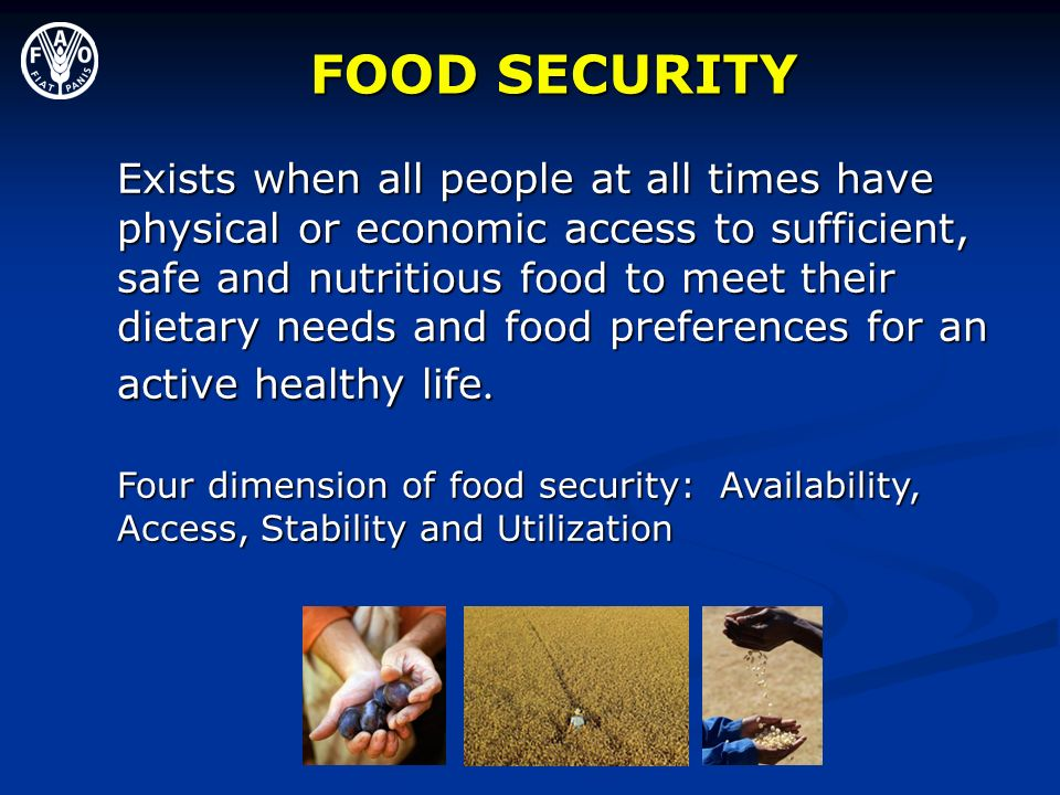 FOOD SECURITY Exists when all people at all times have physical or economic access to sufficient, safe and nutritious food to meet their dietary needs